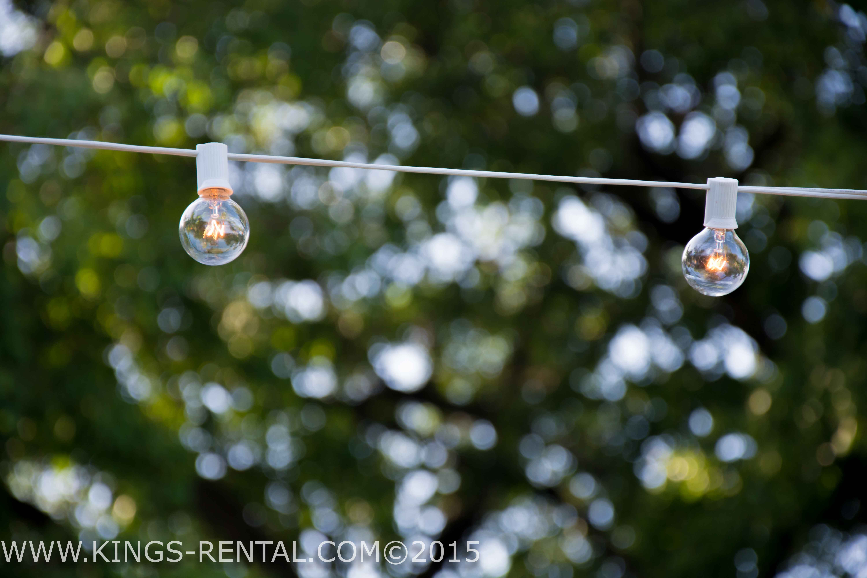 string lights rental - 28 images - signature rentals string lights rentals, string lights caf ...